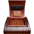 Opened humidor with cigars - Stock Photo