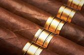 Close up of cigars — Stock Photo