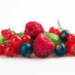 Mixed of Berries — Stock Photo