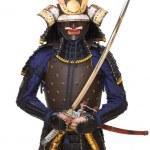 Постер, плакат: Samurai in armor