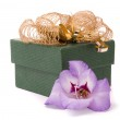Beautiful gladiolus and gift box on a white background. — Stock Photo
