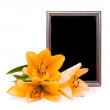 Stock Photo: Yellow lilies and silver frame on white background