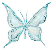 Butterfly from water splash isolated on white — Stock Photo