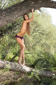 Beautiful naked model poses on a tree — Stock Photo