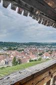 Esslingen am vistas neckar desde escaleras castillo, alemania — Foto de Stock