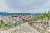 Esslingen am viste neckar da burgsteige vicino a stoccarda, tedesco — Foto Stock
