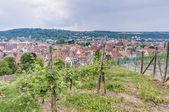 Esslingen am neckar-blick von der burg, deutschland — Stockfoto