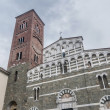 San Pietro Somaldi in Lucca, Tuscany, Italy — Stock Photo #18500657
