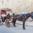Buggy (Karrozin) in Valletta, Malta — Stock Photo