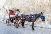 Buggy (Karrozin) in Valletta, Malta — Stock Photo