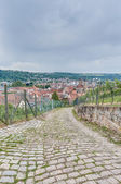 Esslingen am Neckar views from Burgsteige near Stuttgart, German — Foto Stock