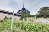 Esslingen am Neckar Castle's Big Tower, Germany — Stock fotografie