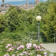 Giardino delle rose (The Rose Garden) in Florence, Italy - Stock Photo