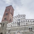 San Pietro Somaldi in Lucca, Tuscany, Italy — Stock Photo #18825099