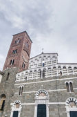 San Pietro Somaldi in Lucca, Tuscany, Italy — Stock Photo