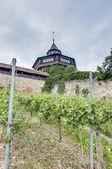 Esslingen am Neckar Castle's Big Tower, Germany — Foto Stock