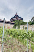 Esslingen am Neckar Castle's Big Tower, Germany — Foto de Stock