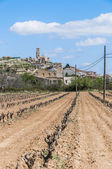 Corbera de Ebro village at Tarragona, Spain — Stock Photo