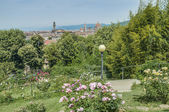 Giardino delle rose (The Rose Garden) in Florence, Italy — Stock Photo