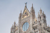 Santa Maria della Scala, a church in Siena, Tuscany, Italy. — Foto de Stock