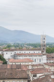 General View of Lucca in Tuscany, Italy — Stock Photo