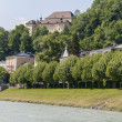 Stock Photo: Salzach river on its way through Salzburg, Austria