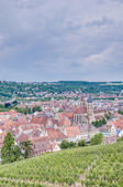Esslingen am Neckar views from the Castle, Germany — Foto Stock