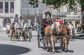 奥地利萨尔茨堡街道上的马车 — 图库照片