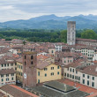 General View of Lucca in Tuscany, Italy — Stok fotoğraf