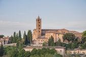 San Francesco, a church in Siena, Tuscany, Italy. — Stock Photo