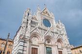 Santa maria della scala, eine kirche in siena, toskana, italien. — Stockfoto