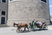 オーストリア ザルツブルグ路上キャリッジ — ストック写真
