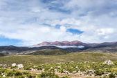 Route 13 to Iruya in Salta Province, Argentina — ストック写真