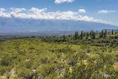 Calchaqui Valley in Tucuman, Argentina — Stock Photo