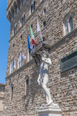 Michelangelo's David statue in Florence, Italy — Stock Photo