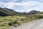 Route 13 to Iruya in Salta Province, Argentina — ストック写真