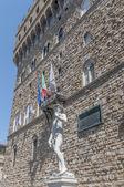 在佛罗伦萨,意大利米开朗基罗的大卫雕像 — 图库照片