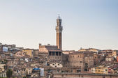 Public Palace and it's Mangia Tower in Siena, Italy — Stockfoto