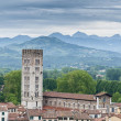 Basilica of San Frediano in Lucca, Italy. — Stock Photo