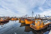 Orange fishing boats in Mar del Plata, Argentina — Stock fotografie