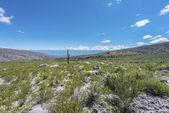 Calchaqui Valley in Tucuman, Argentina — ストック写真