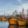 Orange fishing boats in Mar del Plata, Argentina — Foto de Stock
