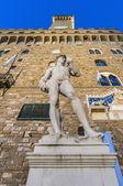 Estátua de david de michelangelo em florença, itália — Foto Stock