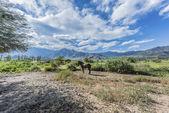 Cachi Adentro in Salta, northern Argentina — Foto Stock