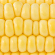 Background of yellow sweet corn — Stock Photo