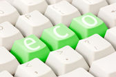 Computer keyboard with an eco option — Stock Photo