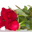 Bunch of red roses — Foto Stock