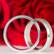 Two silver rings with red roses — Stock Photo