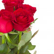 Bouquet of red roses with copy-space — Stock Photo
