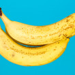 Bananas on a blue background — Stock Photo